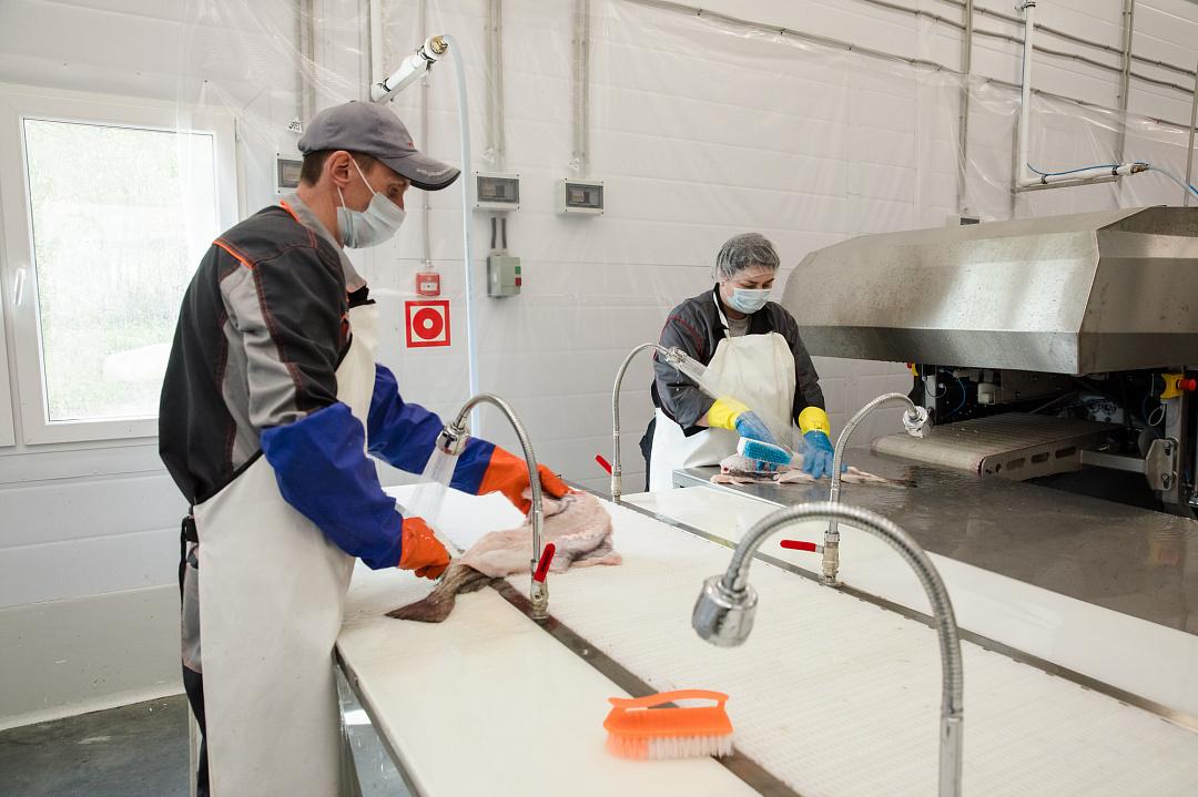 В Мурманске построены два рыбоперерабатывающих завода
